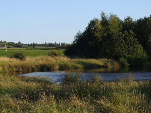Pontefract Park