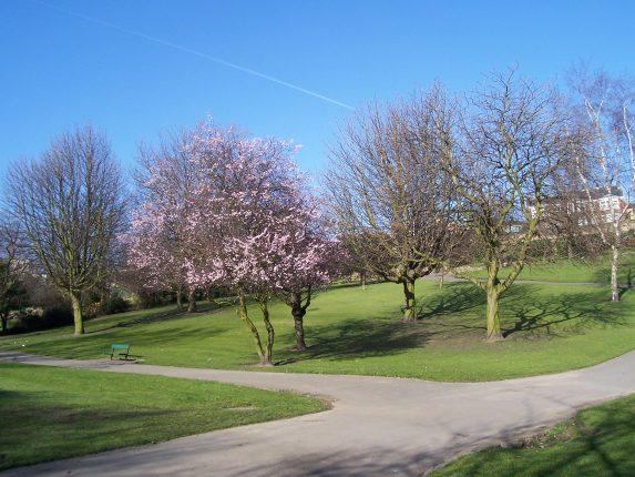 Friarwood Valley Gardens