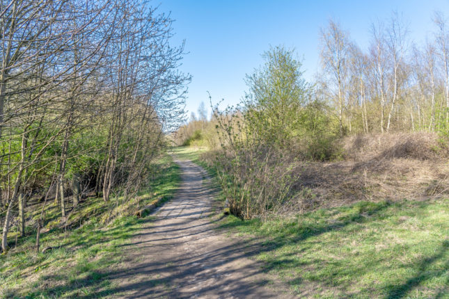 Music at Walton Colliery Nature Park